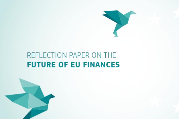 Budżet UE na miarę...