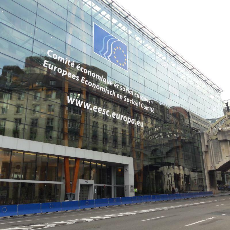 Ilustracja do informacji: COVID-19: Komitet Regionów ma uruchomić platformę wspierającą społeczności lokalne i regionalne w całej Europie